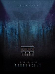Braund - Les plus grands films que vous ne verrez jamais - affiche Night Skies
