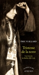 Vuillard - Tristesse de la terre