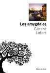 Lefort - Les amygdales