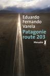 Eduardo Fernando Varela - Patagonie route 203